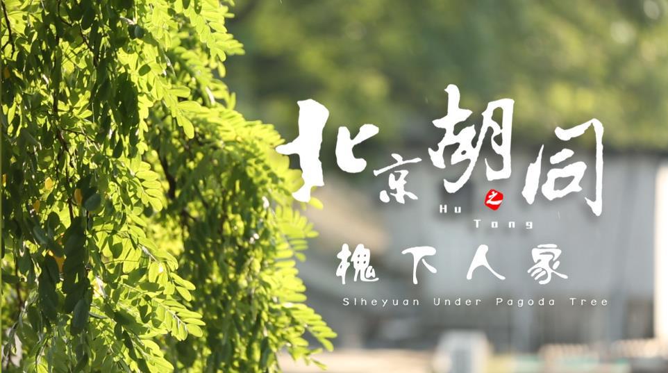 北京胡同第二季:槐下人家